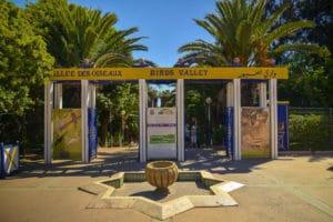 visiter la vallée des oiseaux à Agadir : pic